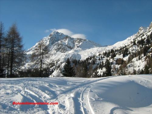 areas of mountain