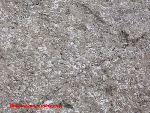 geologia delle dolomiti