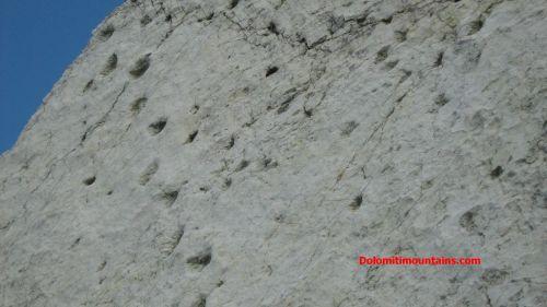impronte su una antica spiaggia