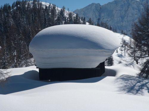 roof like a mushroom