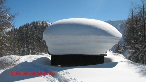 mushroom of snow